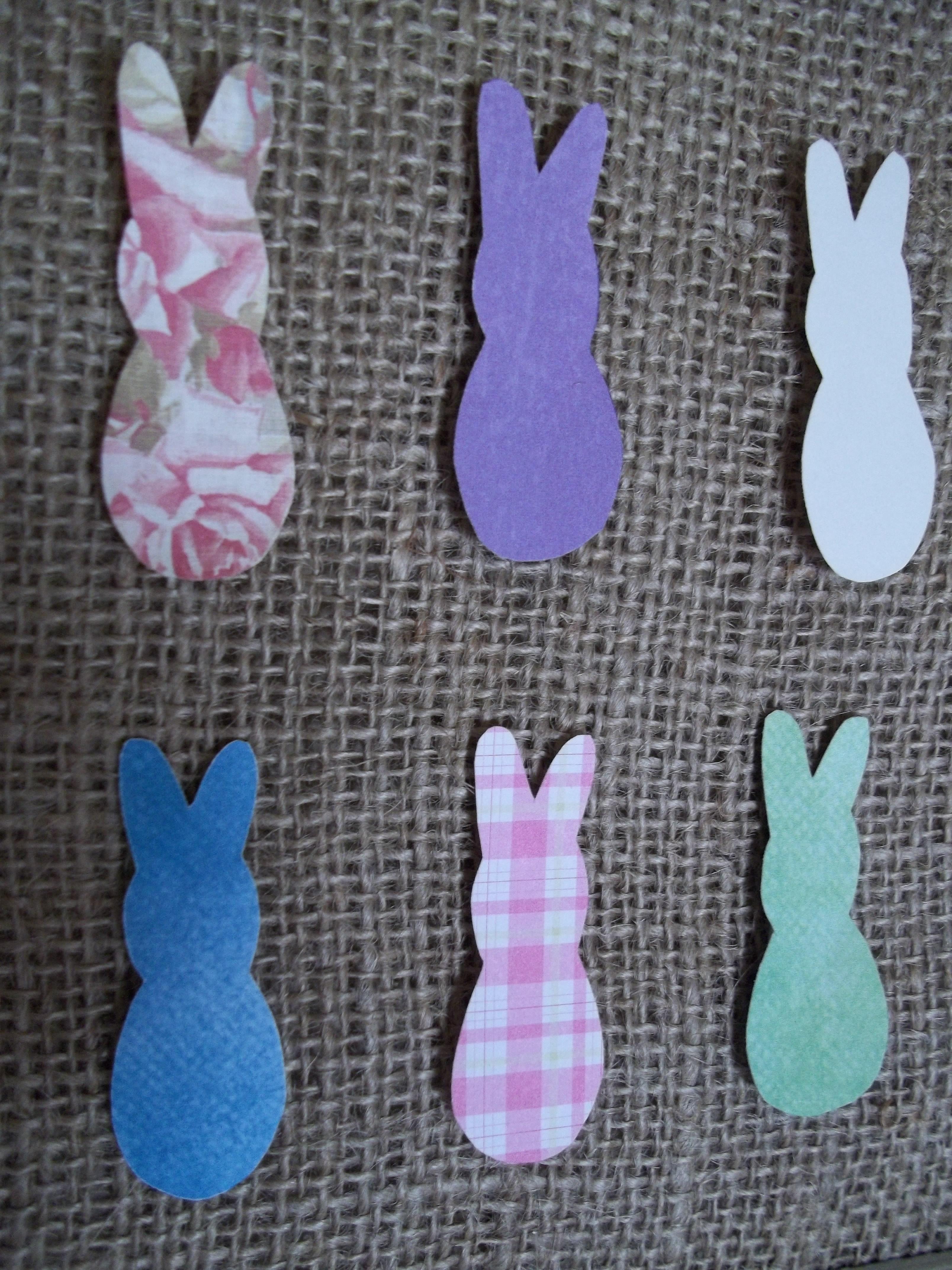 Easter Bunny Specimen Art – Quiver Full of Blessings