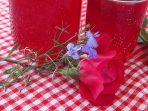 strawberry jelly, H brownie awards 019