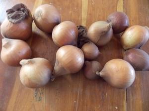 onions, root beer chicken 005