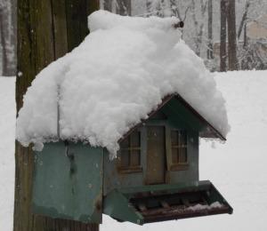 snow days Feb2014 ebay2-6-14 007